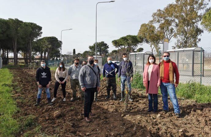 Olitar dona 15 piante di  ulivo alla sezione di Agraria del Cardarelli