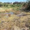 Fare Verde chiede alla Regione di cercare nuove fonti d'acqua prive di arsenico e aprire un tavolo di confronto sul problema idrico